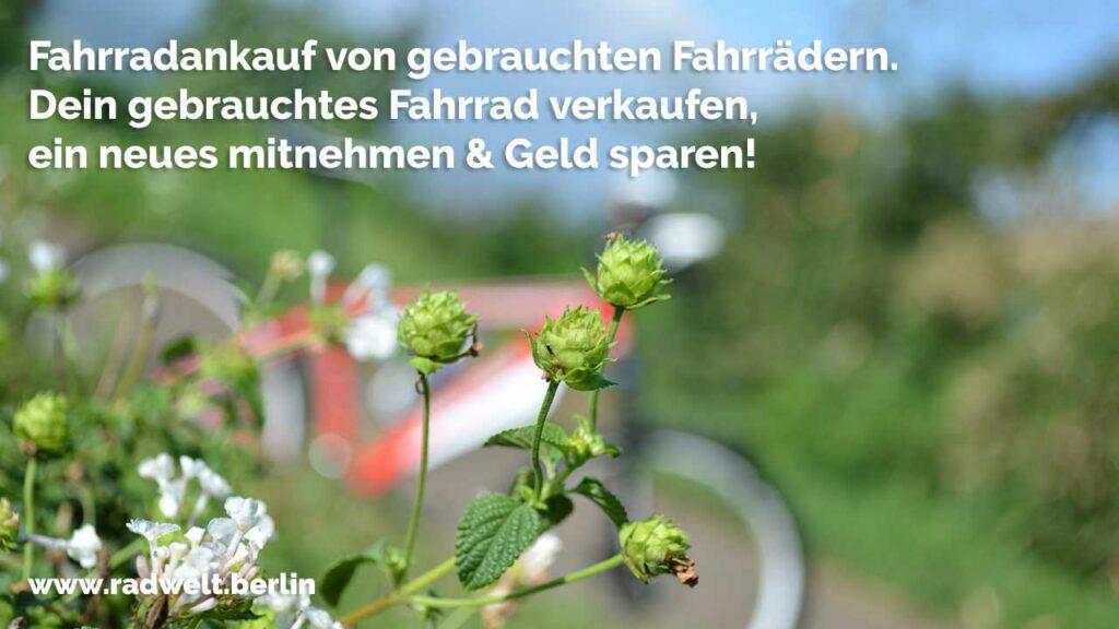 Best Gebrauchte Küchen Hamburg Images - Ridgewayng.com ...