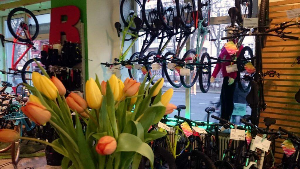 Frühlingserwachen - Radwelt Fahrrad Aktion