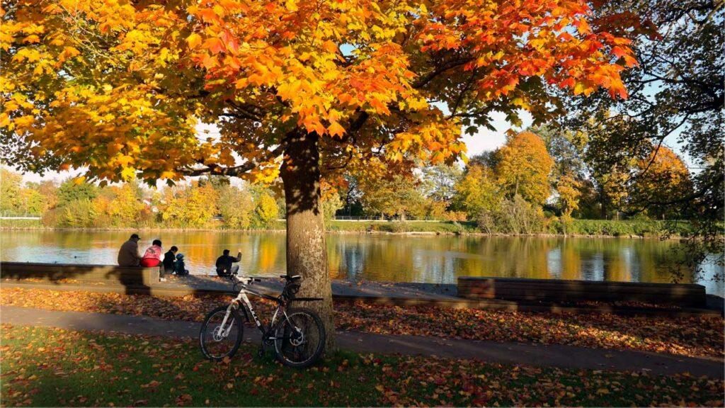 Fahrrad Herbst Berlin - Radwelt Berlin
